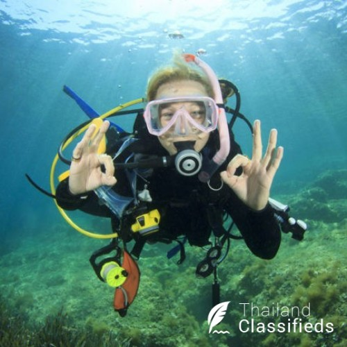 Searching for Scuba Diving in Thailand?