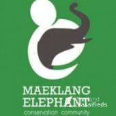 Maeklang Elephant Conservation